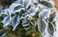 Sodas žiemos sezonu: kaip suteikti jaukumo?