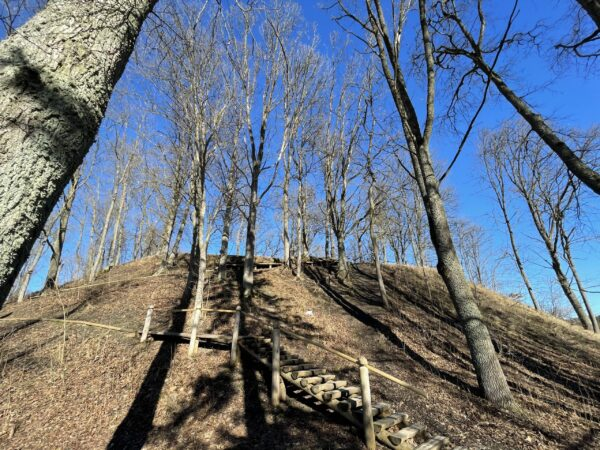 Mežuotnės piliakalnis